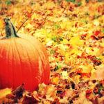 October Pumpkin