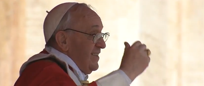 Pope Francis Preaches on Palm Sunday