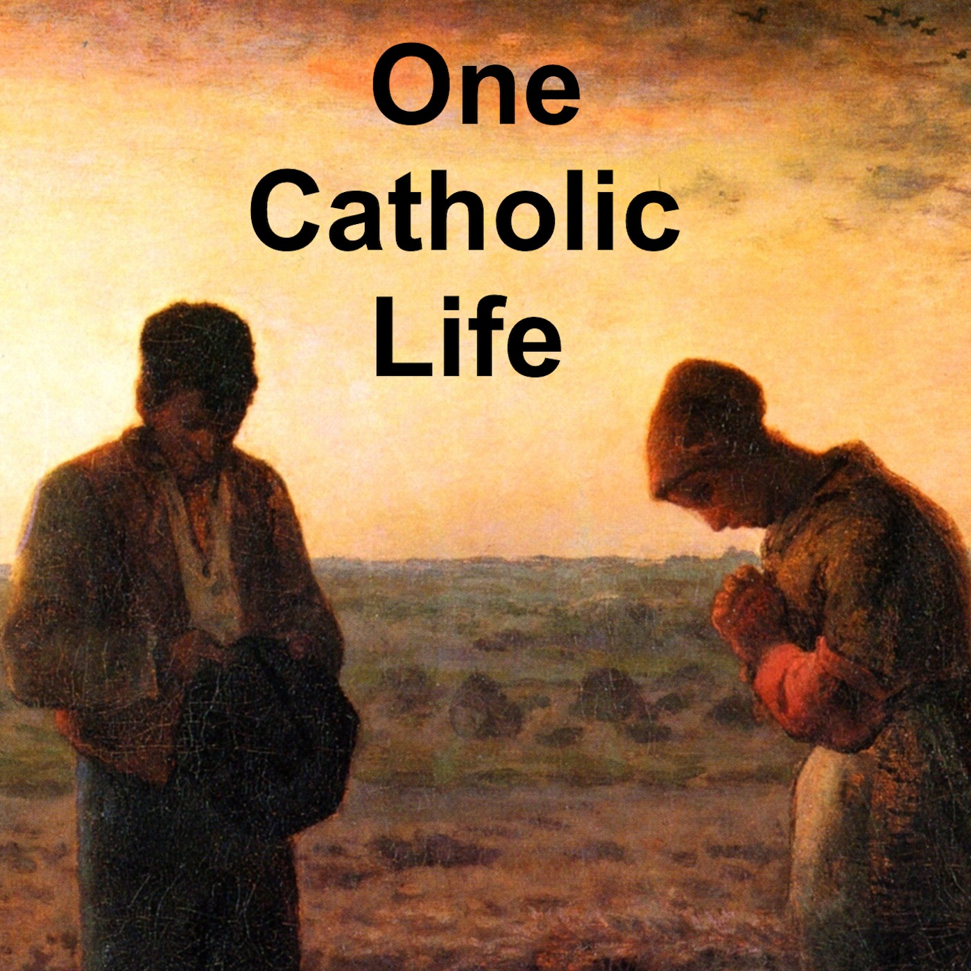 One Catholic Life