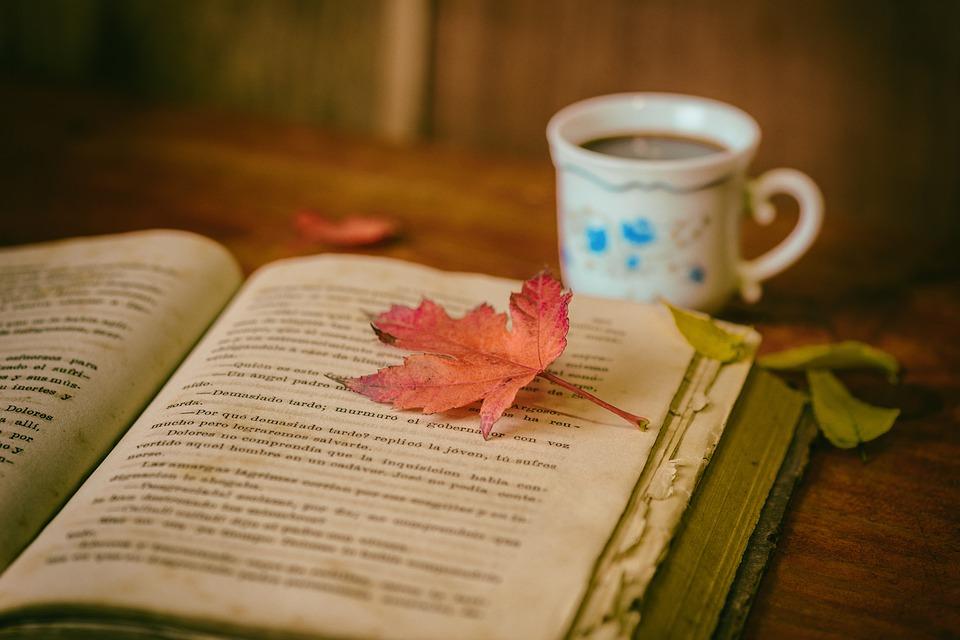 Reading in Autumn