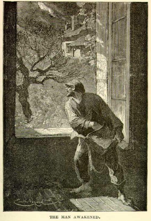 Émile Bayard - The Man Awakened